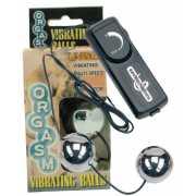 Вагинальные шарики: Серебристые вагинальные шарики с вибраци...