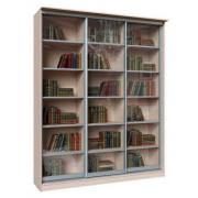 Шкаф-купе книжный Дижон 3