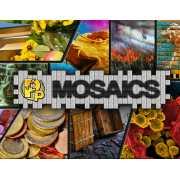 Pixel Puzzles: Mosaics (PC)
