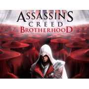 Assassins Creed: Братство крови (PC)