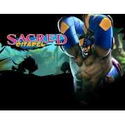 Sacred Citadel (PC)