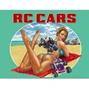 RC Cars (PC)