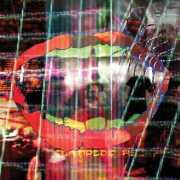Animal Collective / Centipede Hz