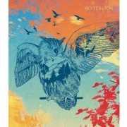 """Книга для записей """"Полет совы. Графика"""" А5, 120 ли..."""